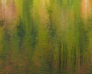 Acadia-Reflection-1-16x20