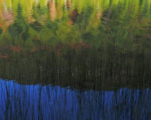 Acadia-Reflection-2-16x20